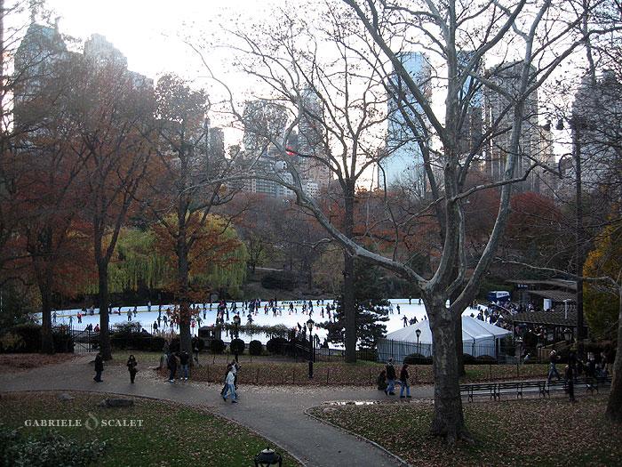 Galleria fotografica di central park new york